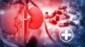 3d render of Human kidney with medicines