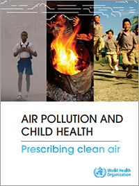 Capture-cover-airpollution-child-report-200px