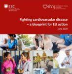Fighting Cardiovascular Disease - a Blueprint for EU action